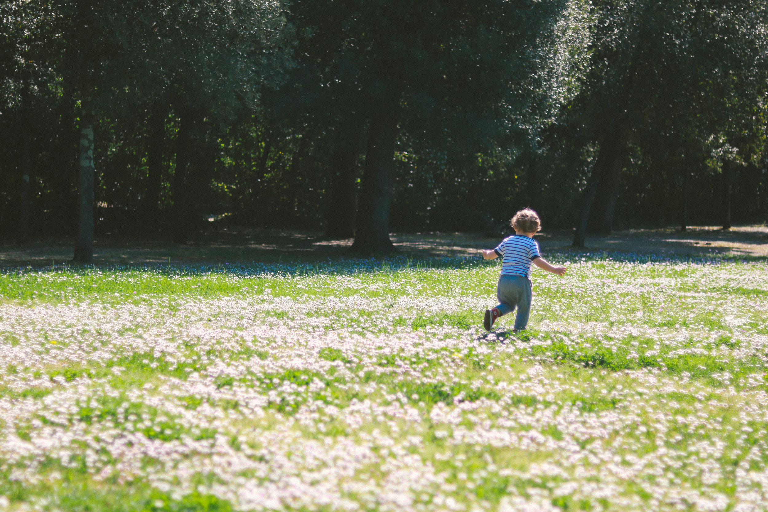Spring-Florence-3.jpg