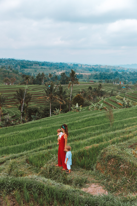 Bali1-1414.jpg