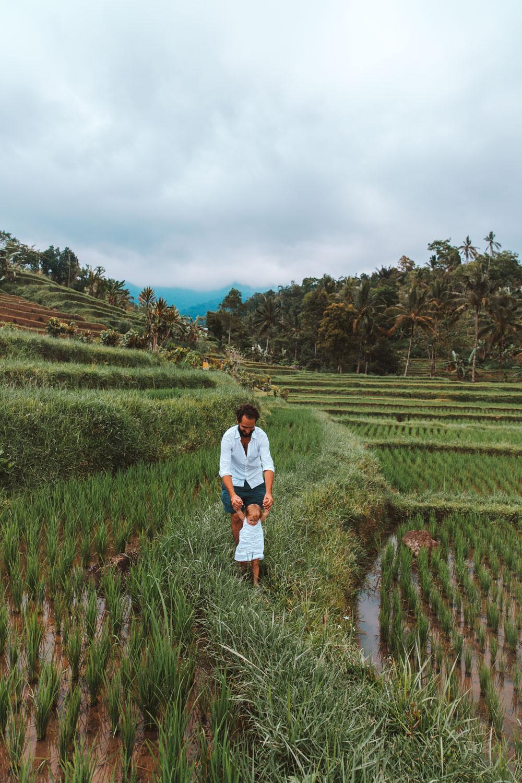 Bali1-1489.jpg