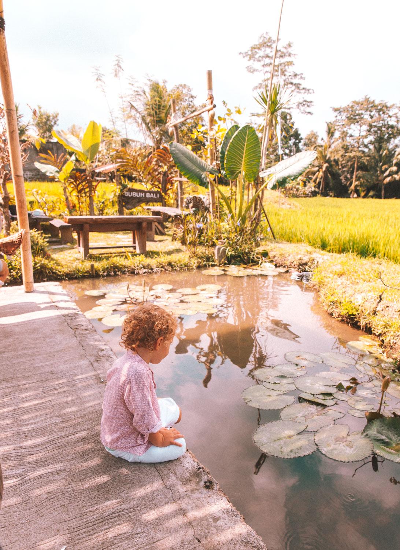 Bali2-2424.jpg