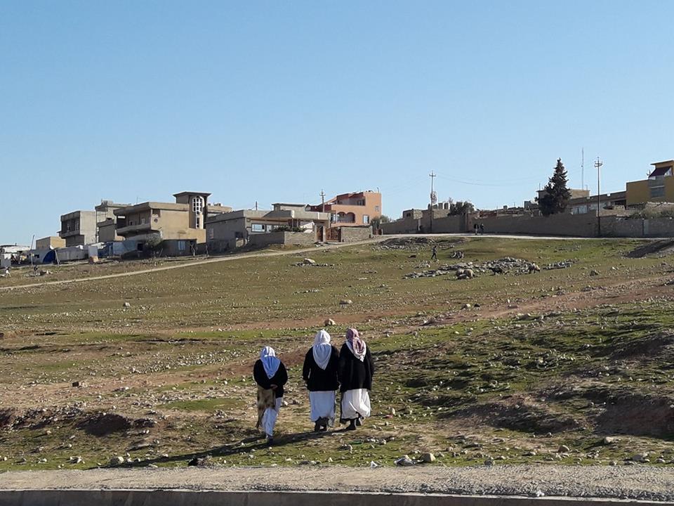 Iraq Response Program -