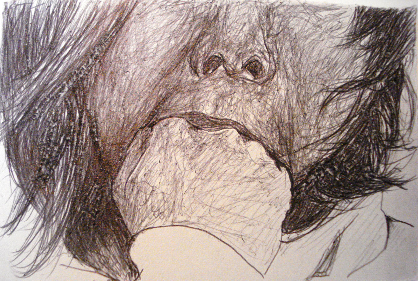 Untitled (Diptych); 2008    Ink on paper, 6 x 4 in