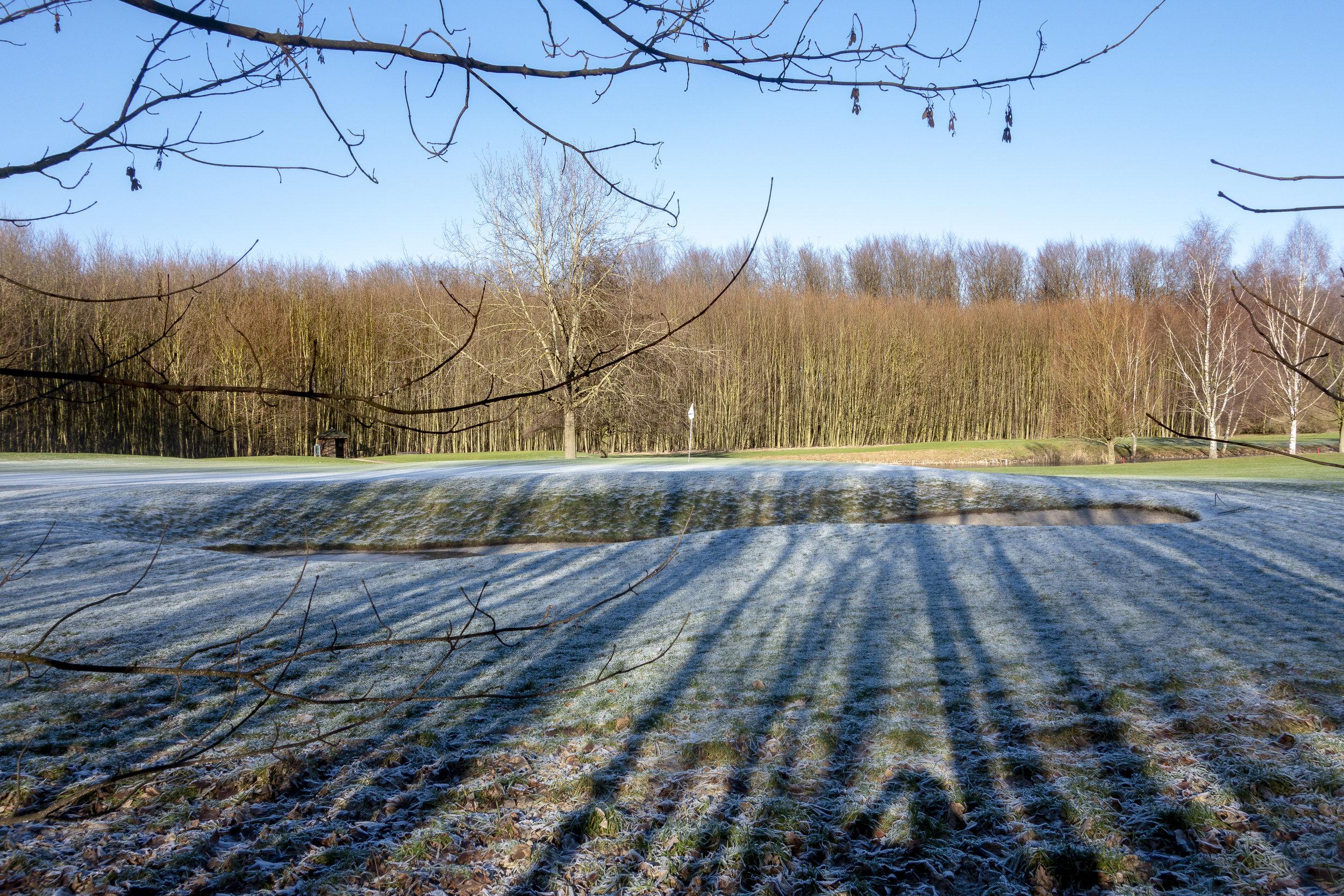 Wintergolf  Januar 2019 GC Schloss Westerholt (4 von 22).JPG