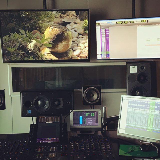 Montage et mixage terminés ! 😓 #documentaries #zen #buddhism #minamisawaroshi #japan #france2 ✨🌸