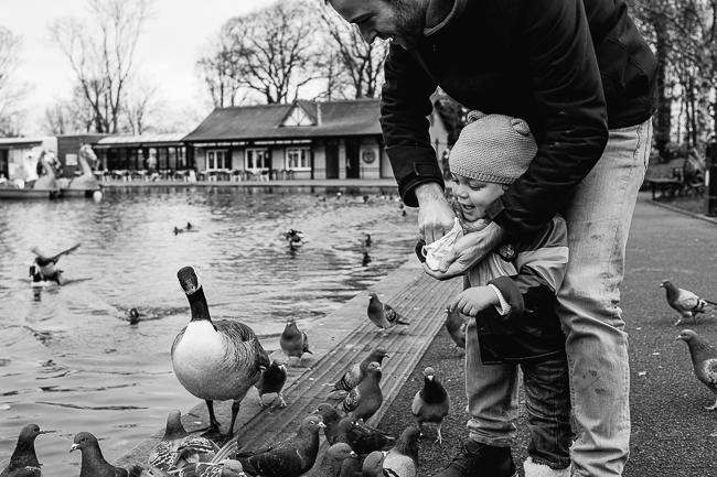 feeding-birds-ally-pally-london.jpg