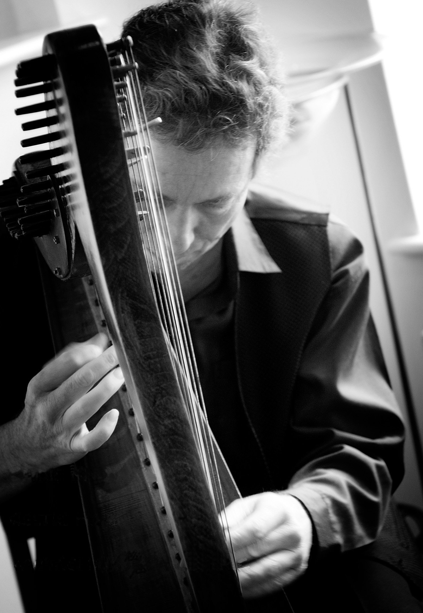Celtic harpist Chris Knowles is joined by fiddler Mike Lease and singer Catrin O'Neill - Enjoy an evening of Celtic music in the Harlech memorial hall. Starting at 7pm on Friday 7th June