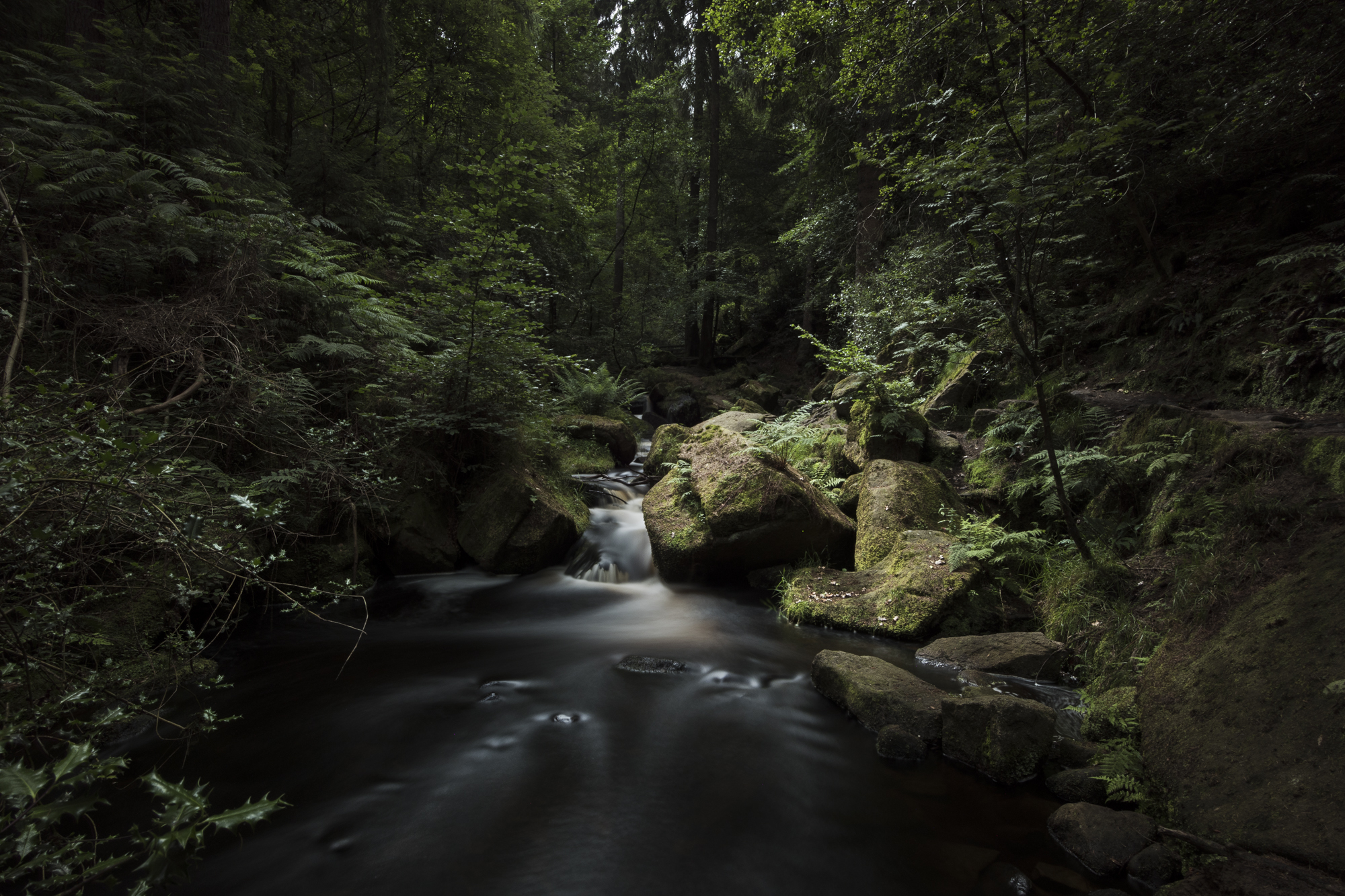 Wyming Brook, Peak District. Unedited raw file from the D7500, with the Nikon 12-24mm f/4 lens and a Tiffen Advantix 10-stop ND filter
