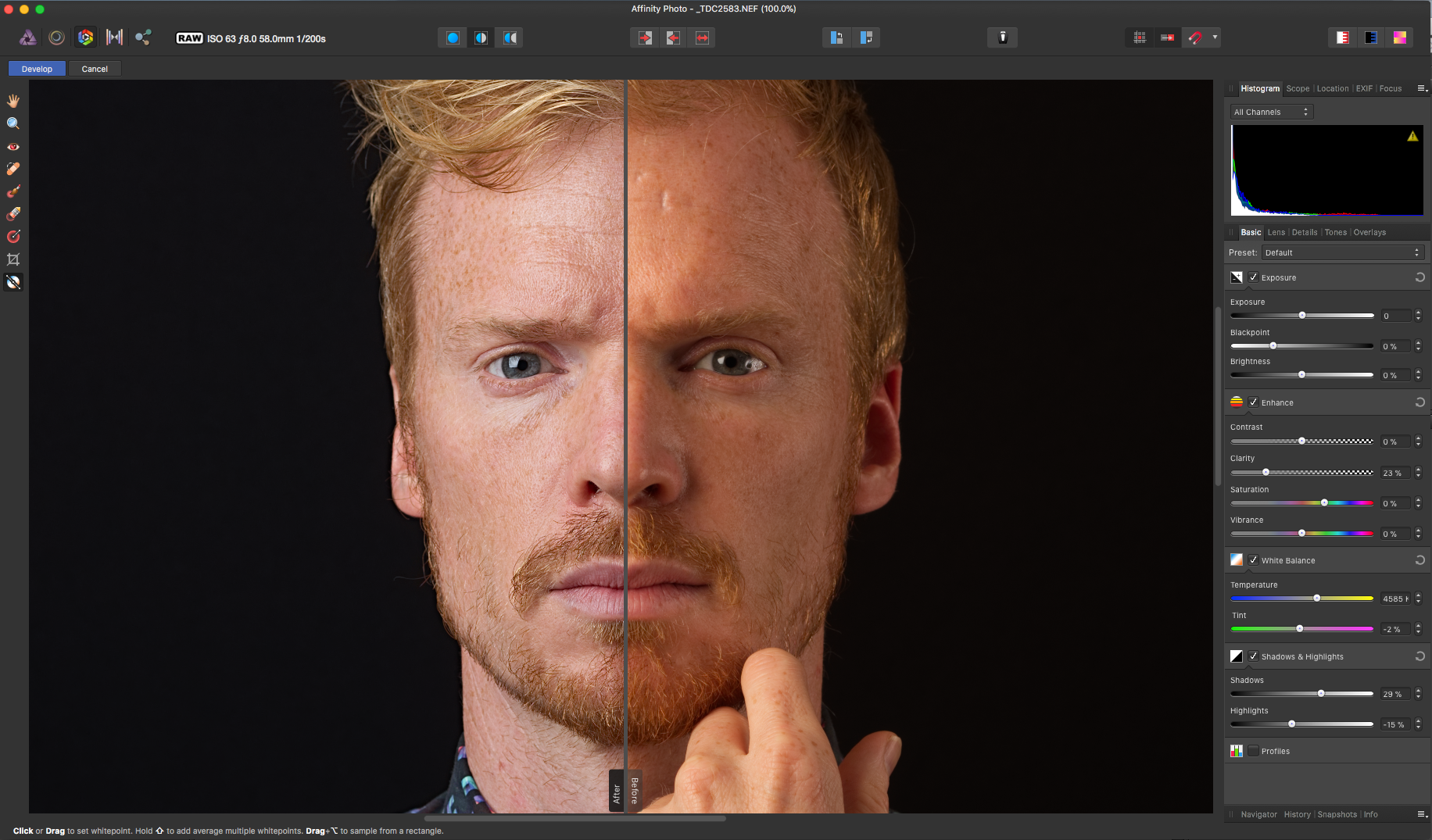 affinity photo screenshot 3 develop persona image view 2.png