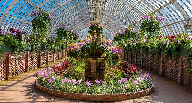 Sunken Garden_CREDIT Paul g. Wiegman.jpg