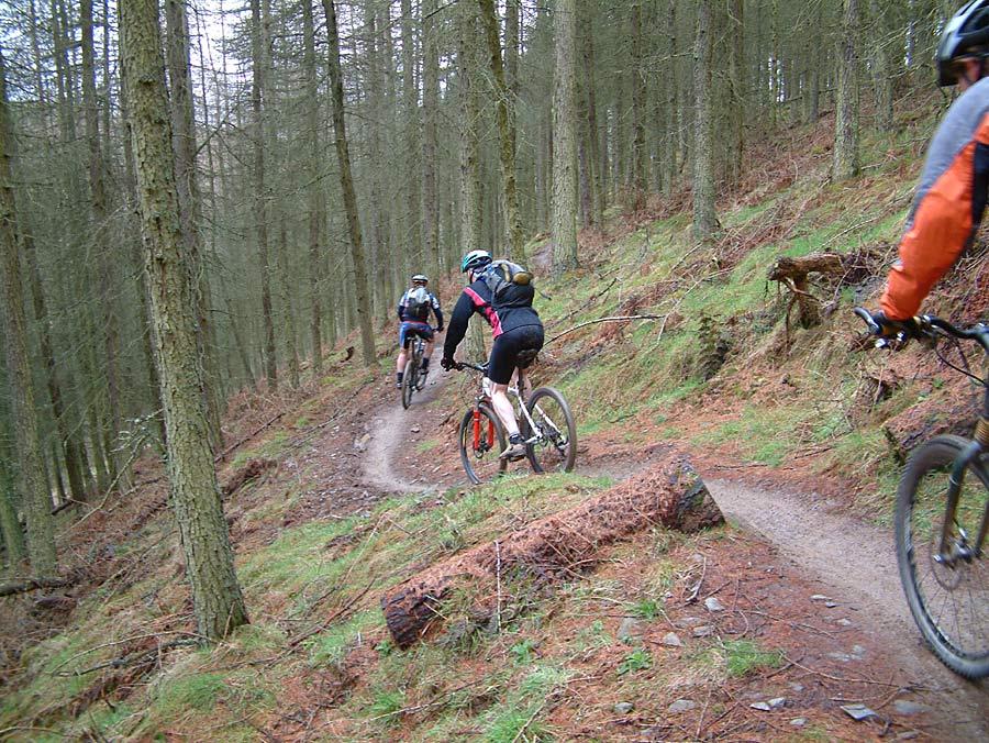 glentress_two_7stanes_mountain_biking_scotland.jpg