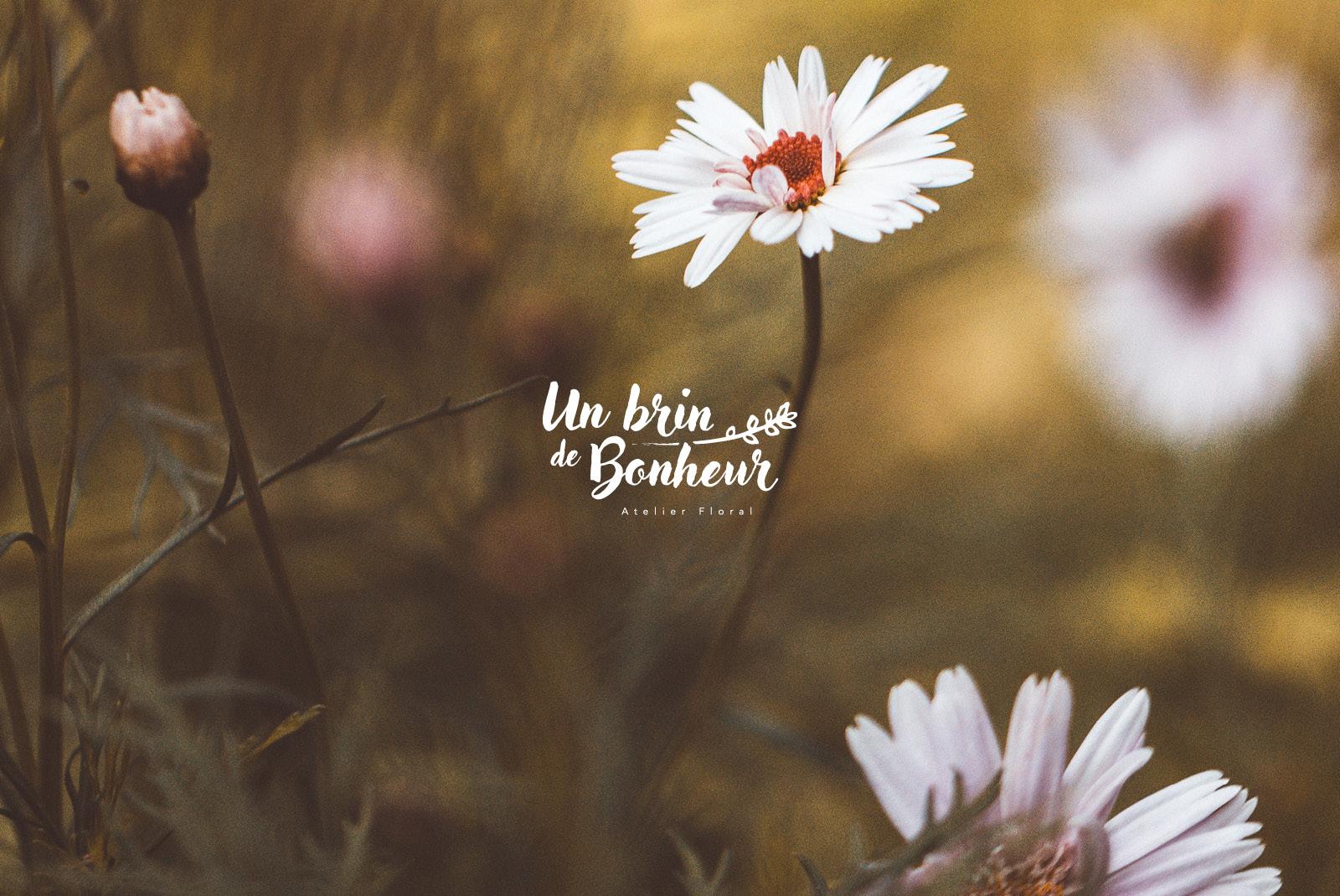 unbrindebonheur_V2.jpg