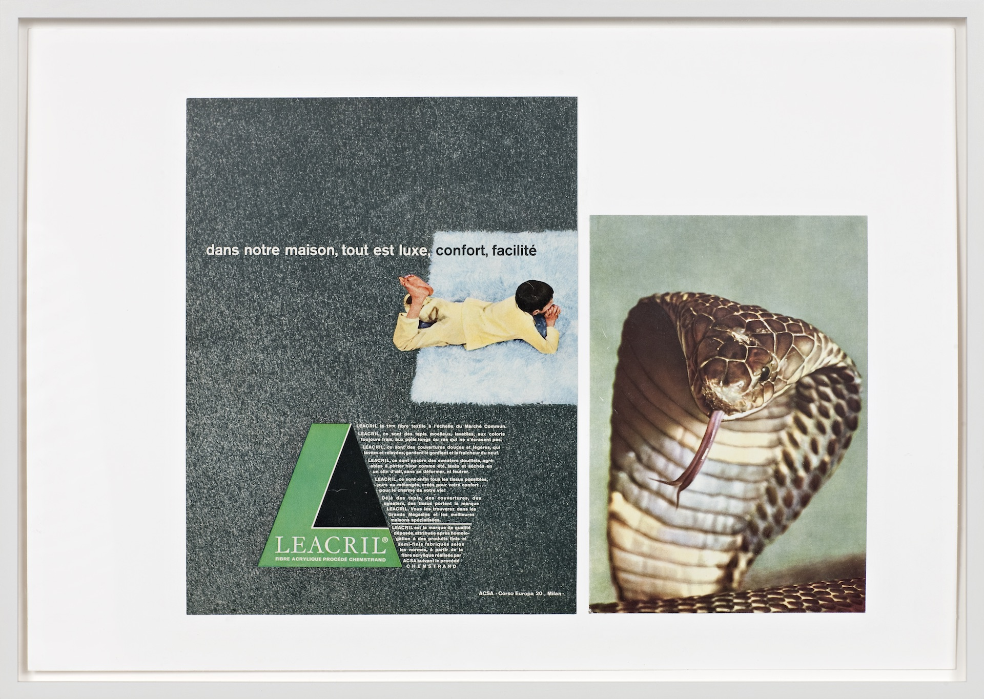 Baby Snakes Hatching. Ruins. Ruins. (dans notre maison)  2011  Collage, 35,5 x 51cm