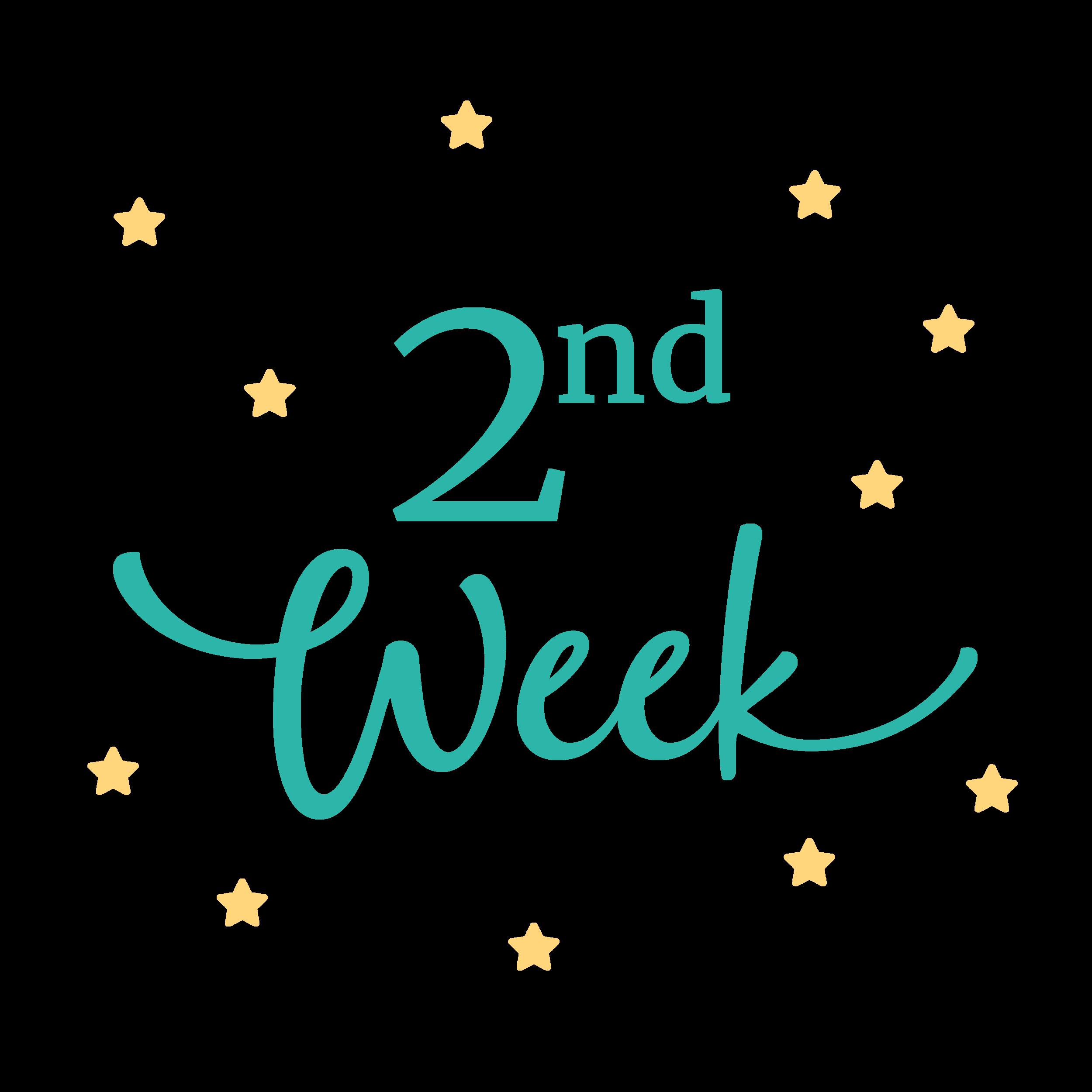 2nd Week Visit - 2 week packet (doc)