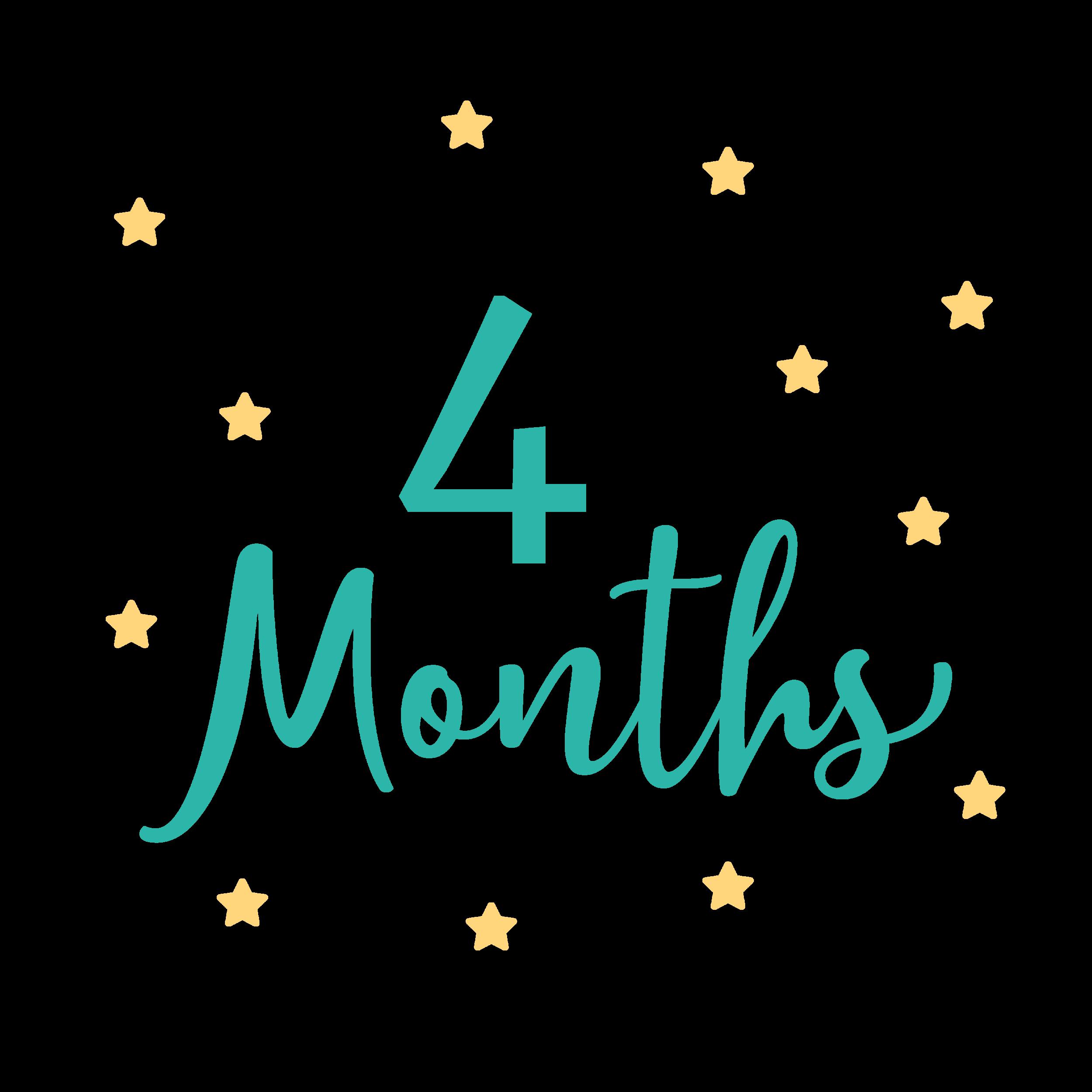 4 Month Visit - 4 month packet (PDF)