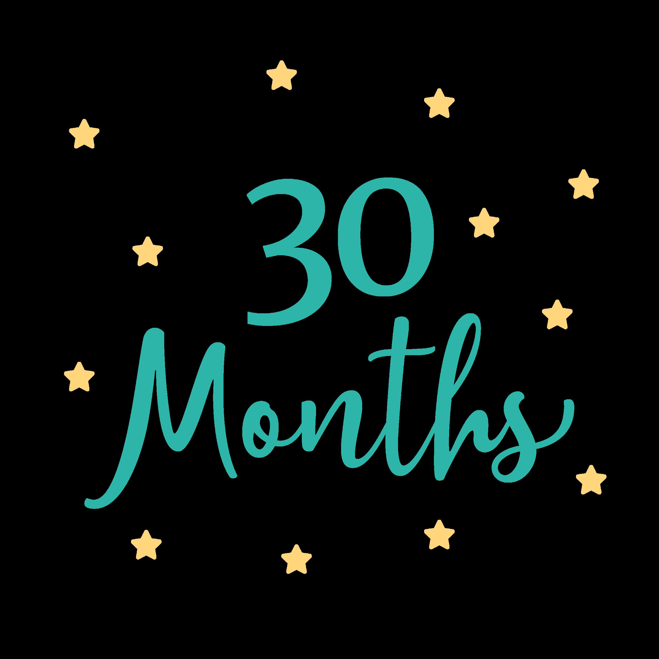30 Month Visit - MCHAT (form)