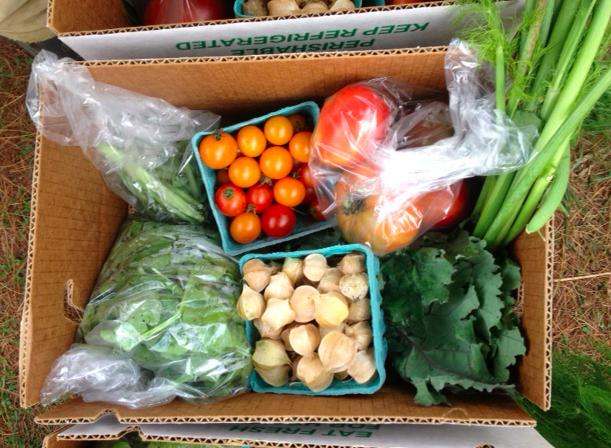 produce share