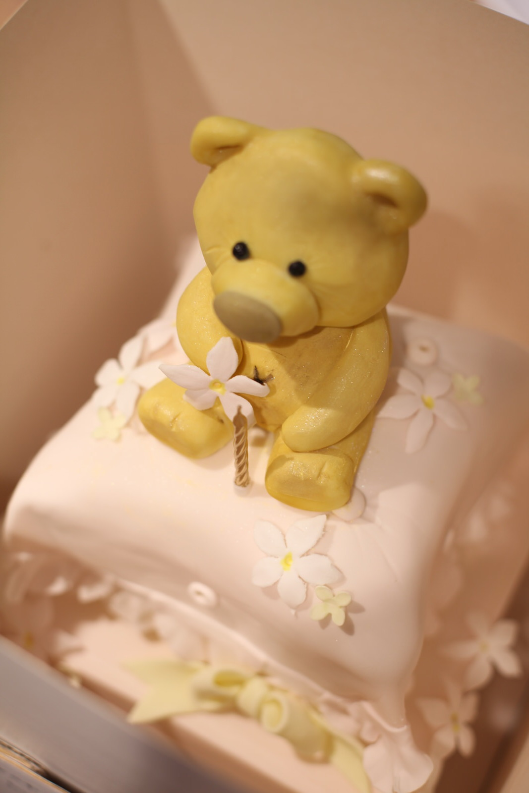 first birthday cake/teddy cake