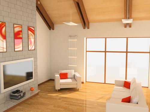 Asheville bamboo flooring home source design center