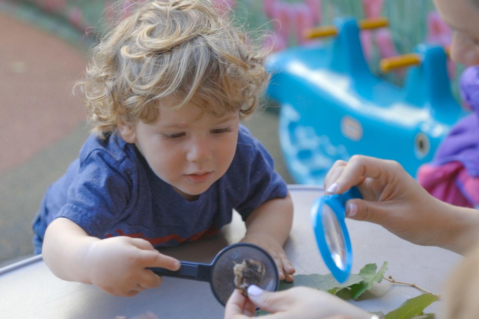 Beansprouts Preschool Leaf Study.jpg