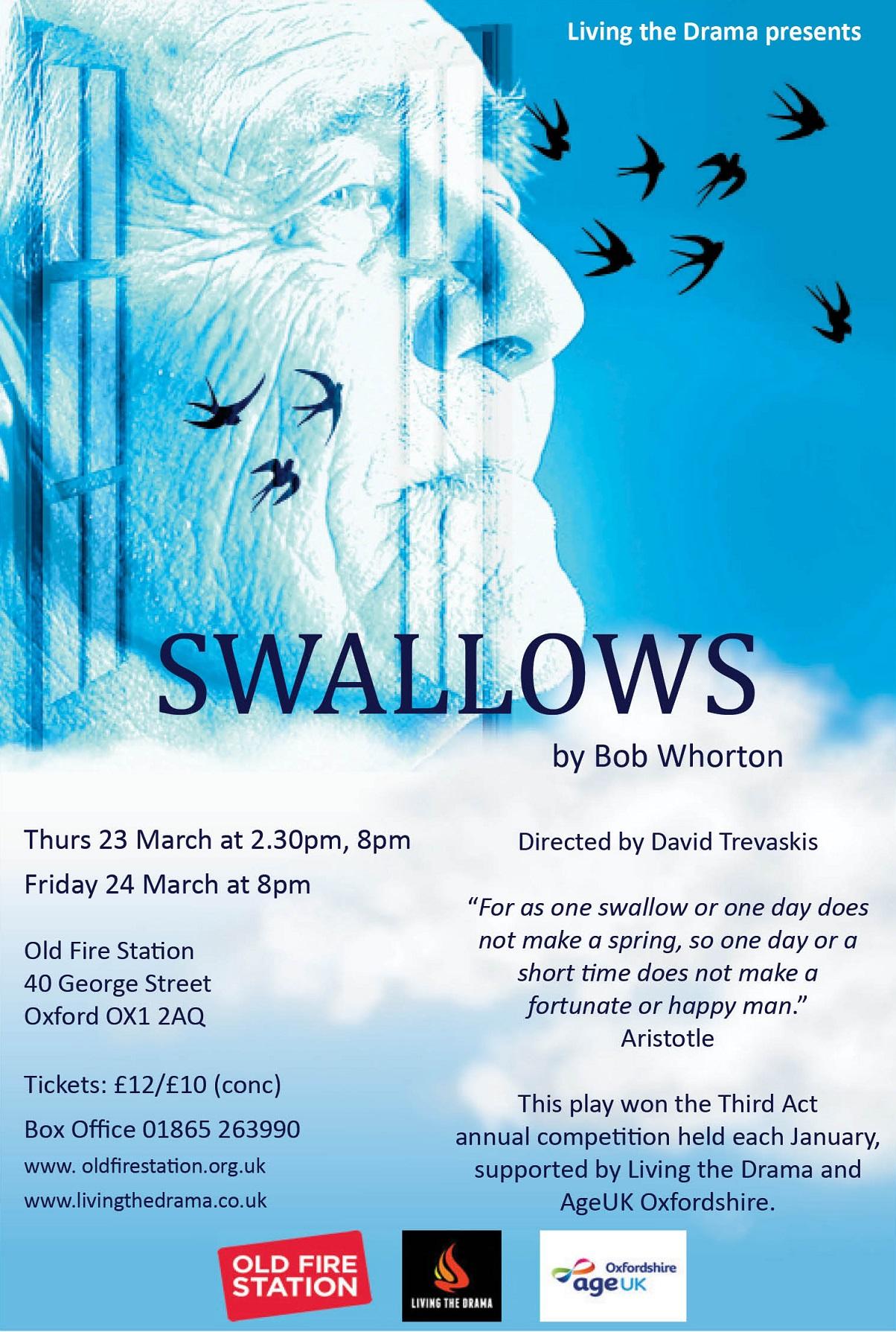 Draft-Swallows-Flyer-Feb-9th.jpg