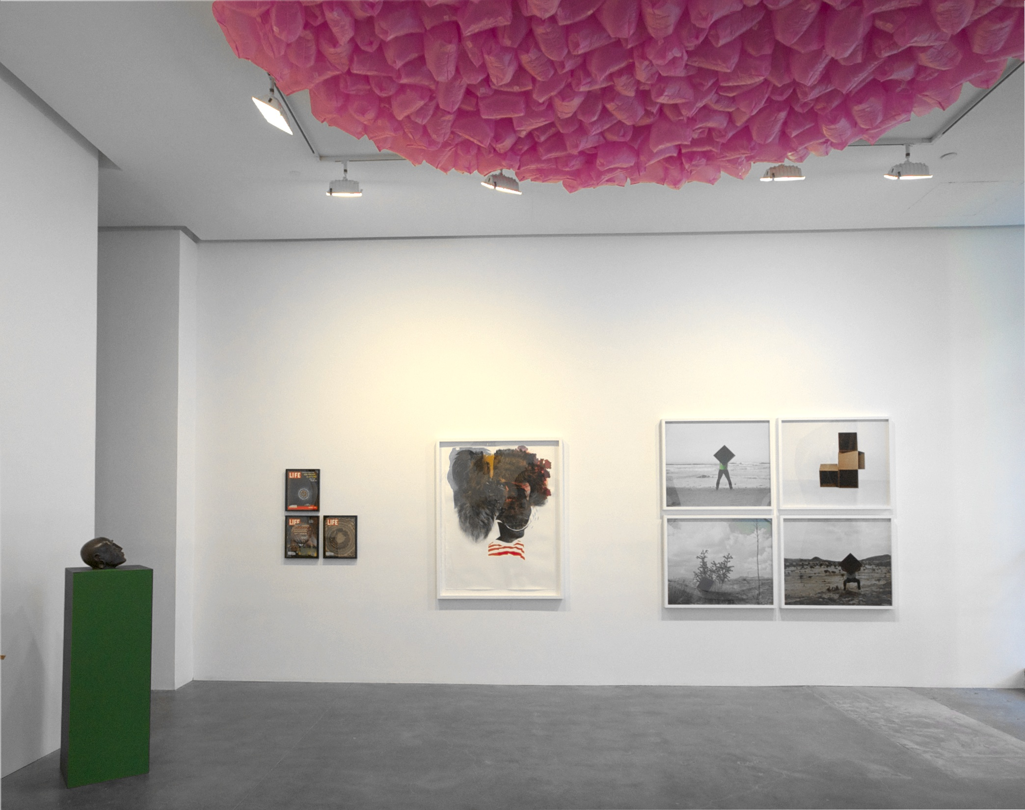 AMERICAN BEAUTY_Installation View (2).jpg