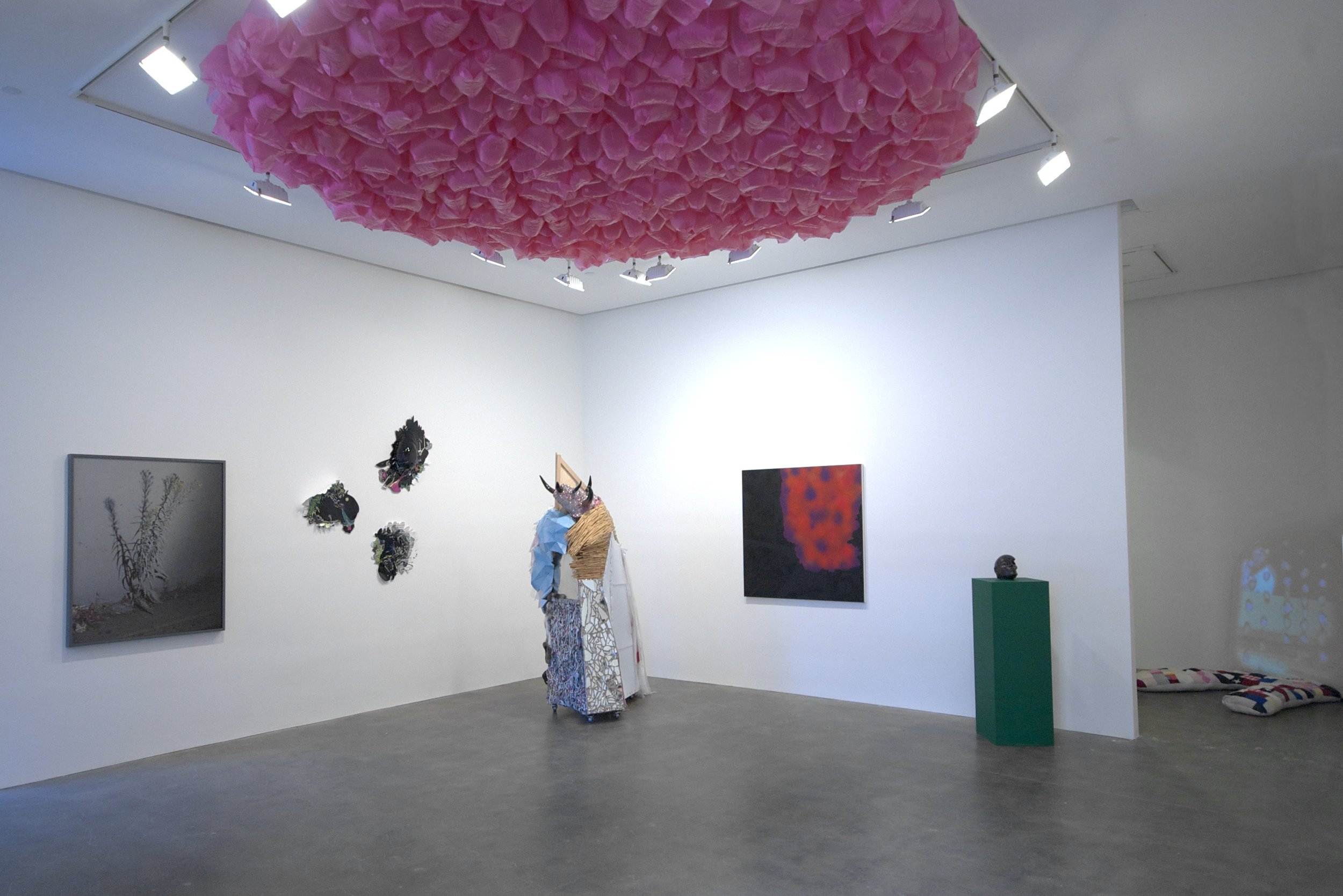 AMERICAN BEAUTY_Installation View (3).jpg