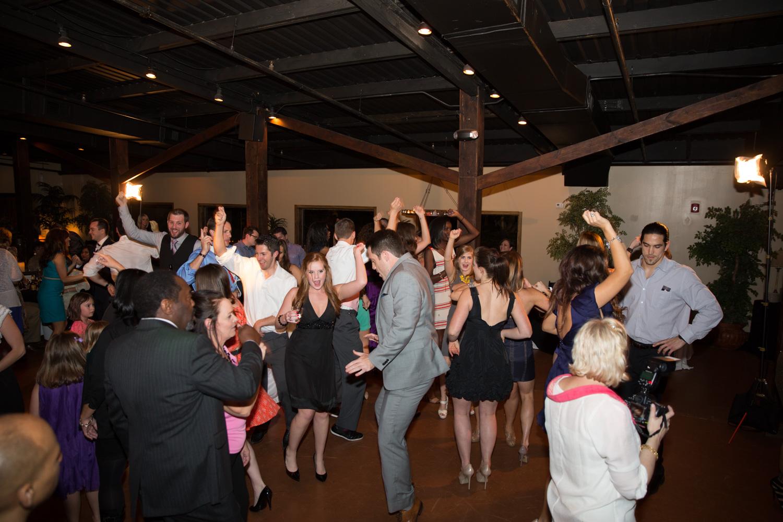 the_wedding_show_dj-10.jpg