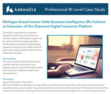 Kaboodle-Professional-Case-Study-BI_-cut.jpg