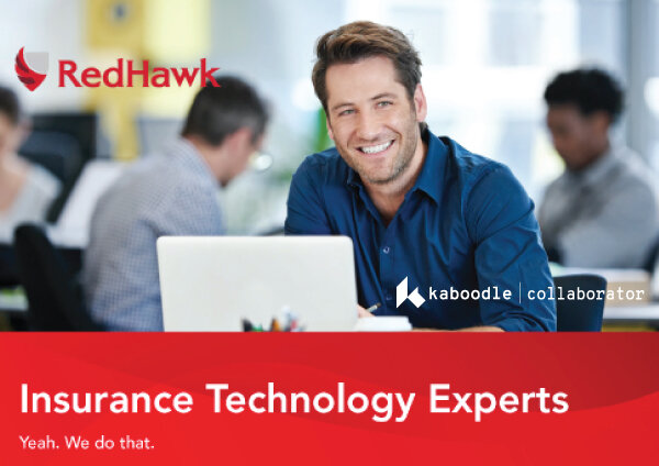 REDHAWK   Red Hawk has experience and expertise working with several core systems including the Phoenix system and the Diamond System.