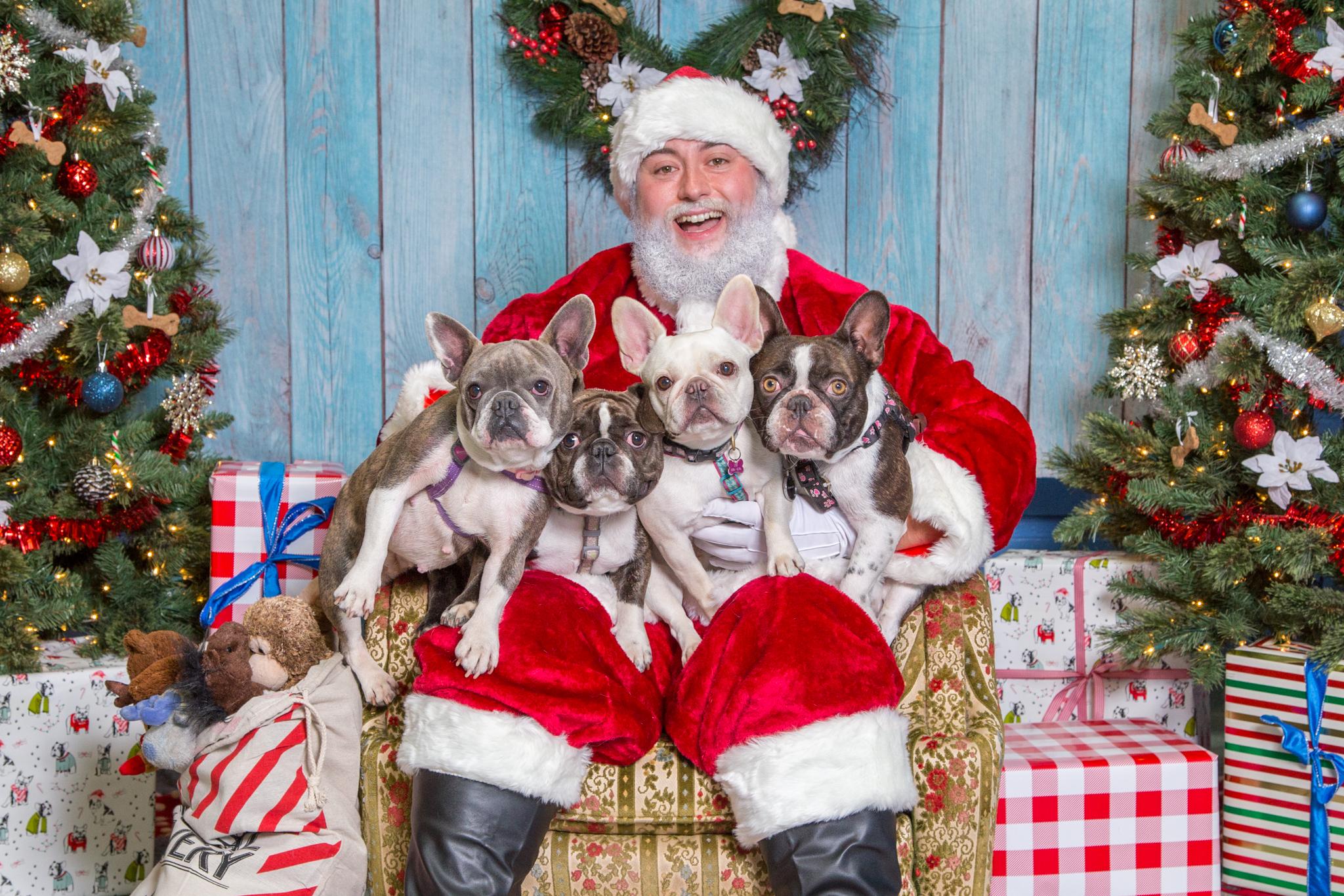 SPCA Santa Photos 2018 -
