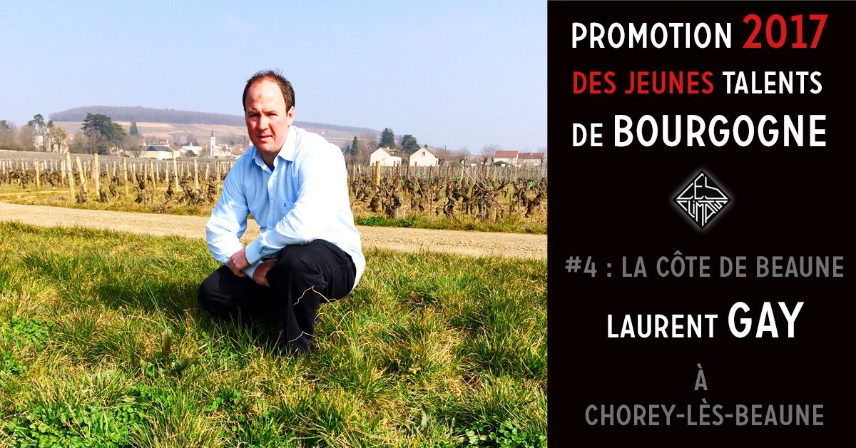 Laurent Gay travaille avec son frère Sébastien sur le domaine familial créé par leur père Michel en 1992 au nord de la Côte de Beaune.  Le Domaine, issu d'une partie des terres de leur grand-père, s'étendait alors sur 6,5 Ha. Aujourd'hui, Laurent et Sébastien travaillent sur presque 16 ha. Le vignoble est conduit en agriculture raisonnée avec un regard « Bio ». Les vins sont puissants, évoluant vers la finesse notamment sur les appellations Aloxe-Corton, Beaune, Savigny-lès-Beaune, sans oublier une cuvée de Corton Renardes grand cru.