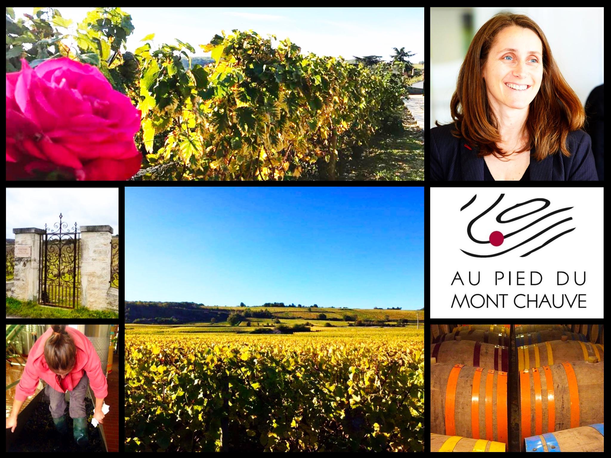 Dégustation Francine Picard (Dom. Au Pie du Mont Chauve) - Meursault - 21 mar 2019