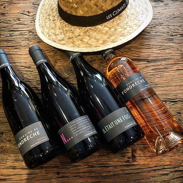 Des vins issus de raisins cultivés sous la bonne étoile 💫 🍇 bénéficiant de la protection et de la fraîcheur du Mont Ventoux. J'ai nommé le domaine de Fondrèche. C'est l'heure du rosé à l'ombre des oliviers ;-) #fondreche #ventoux #vinsvivants #cinsault #syrah #grenache #roussanne #clairette #rolle #mourvedre #dreamteamlesclimats