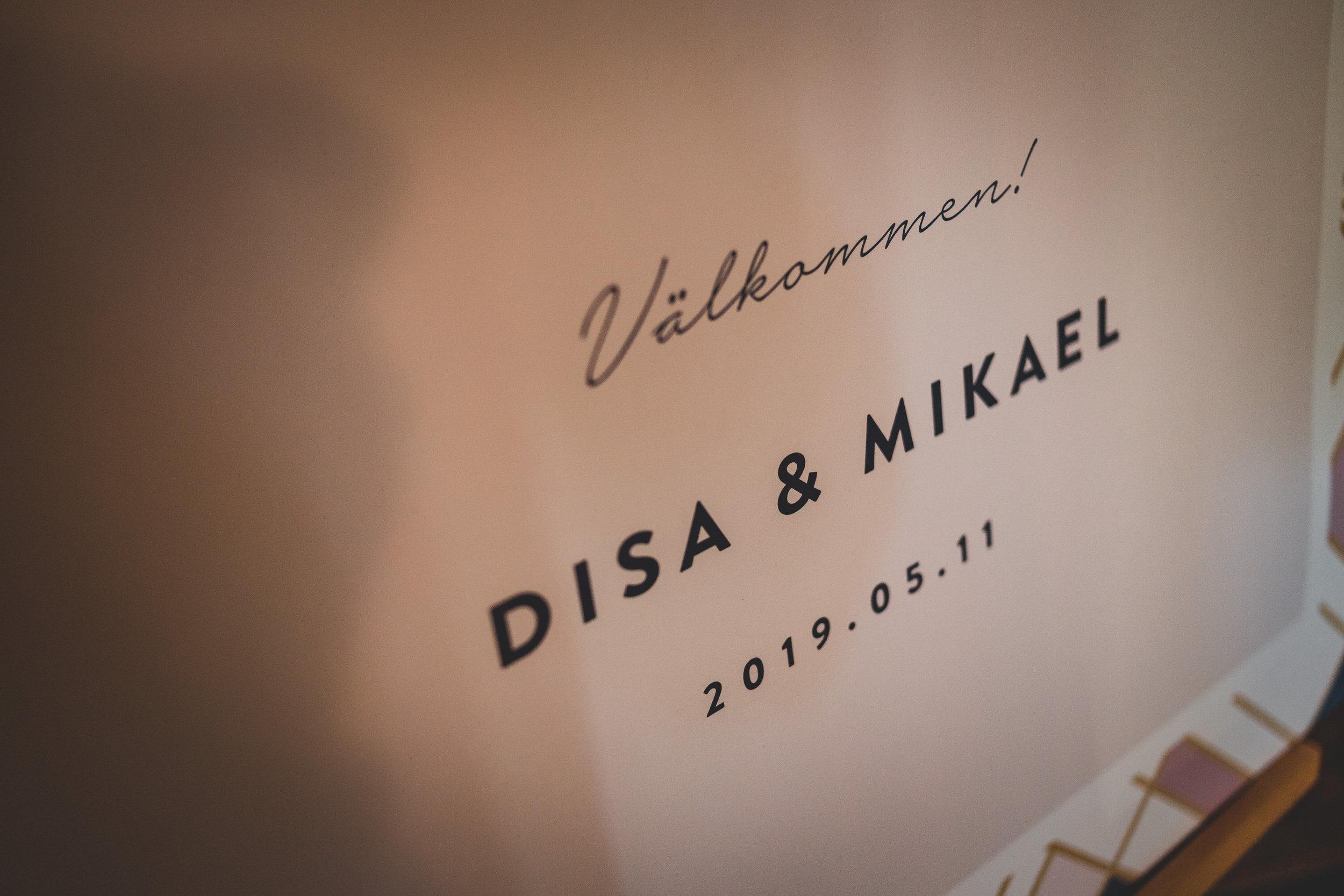 Disa & Mikael-200_1.jpg