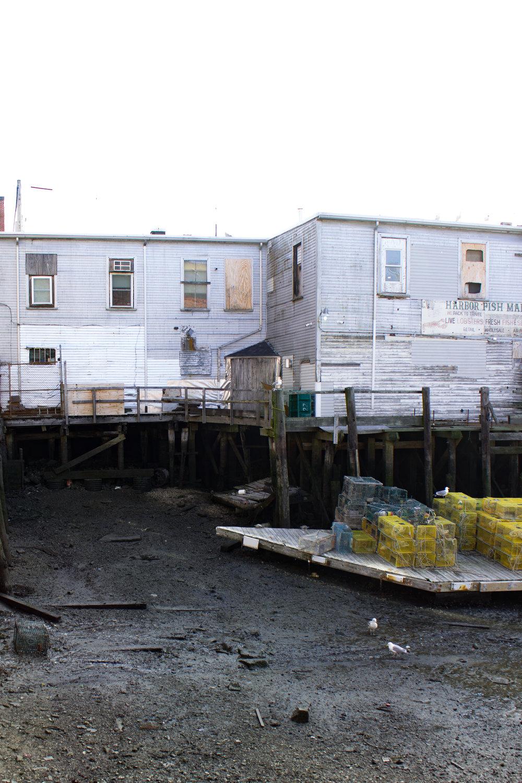 Custom House Wharf at low tide. Galen Koch © 2016