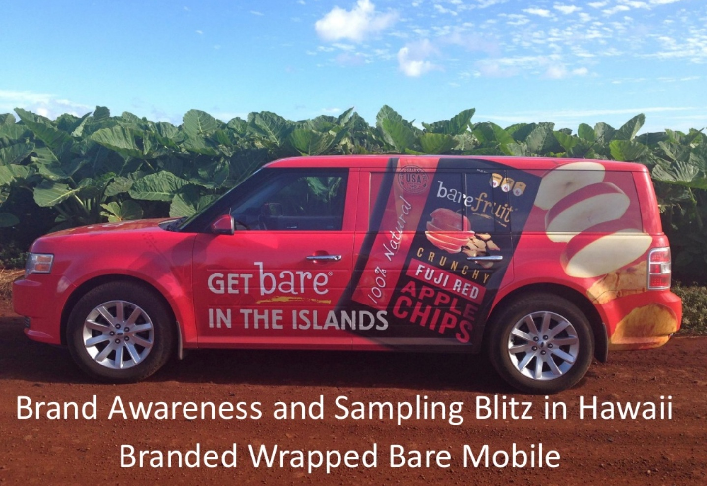 Sample of Erin's brand awareness work.