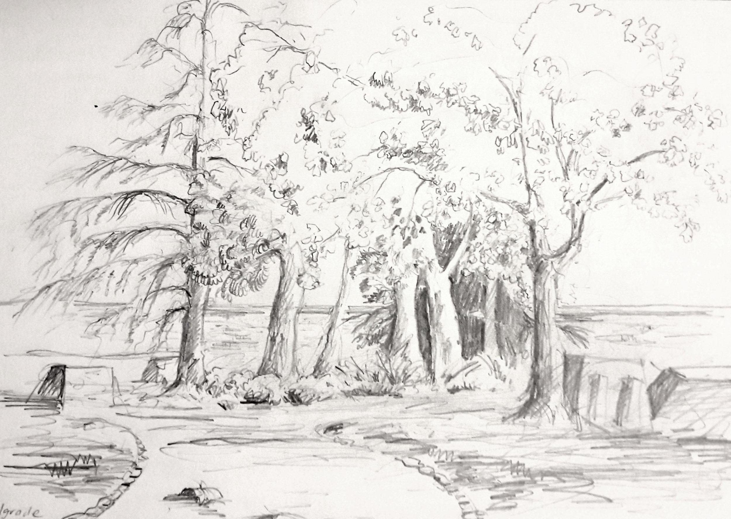 Sketch in the park by Ali Savic