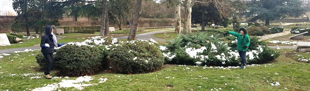 Snowball Fight Park.jpg