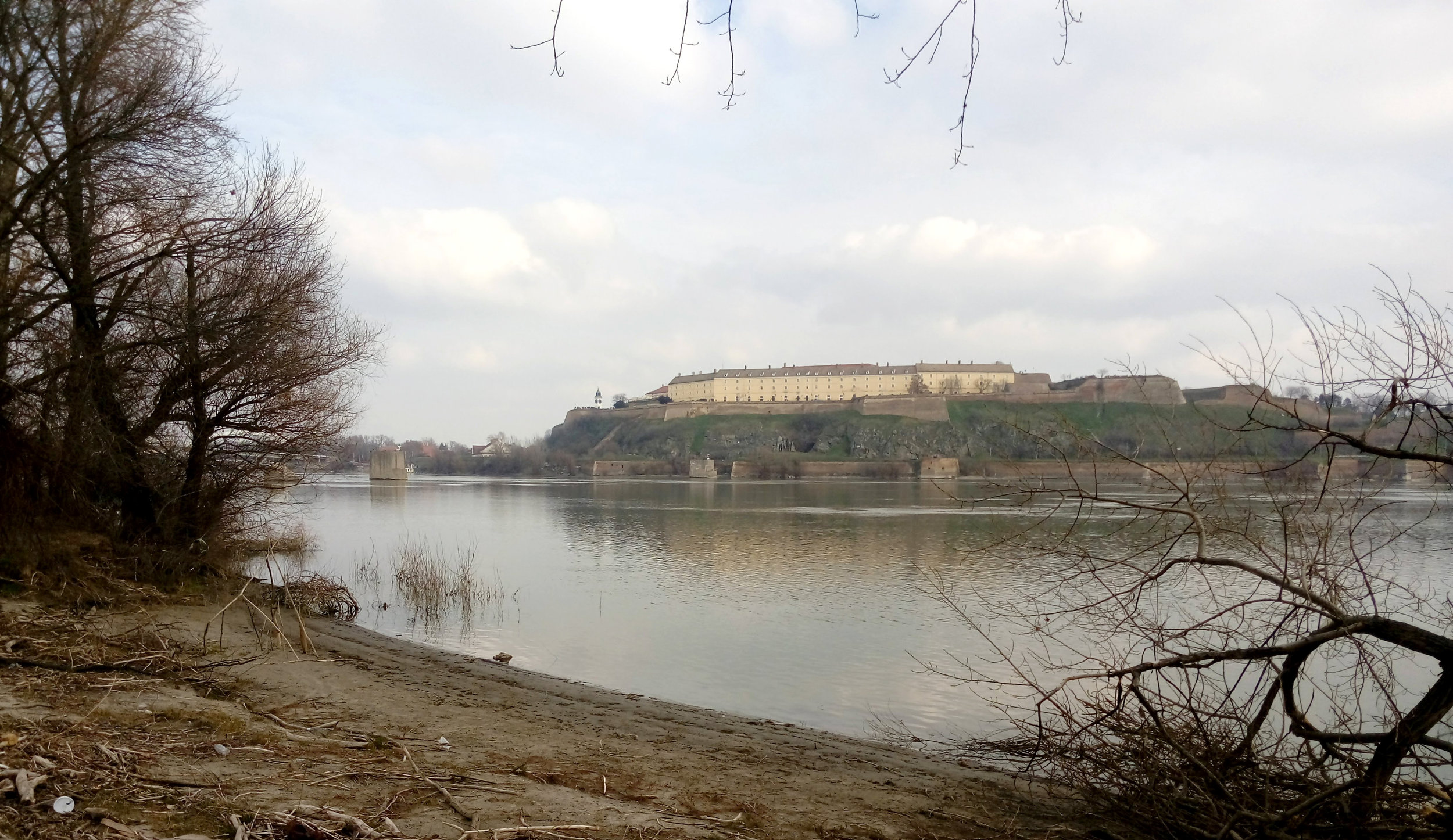 The Danube with the Petrovaradin Fortress on the opposite bank.