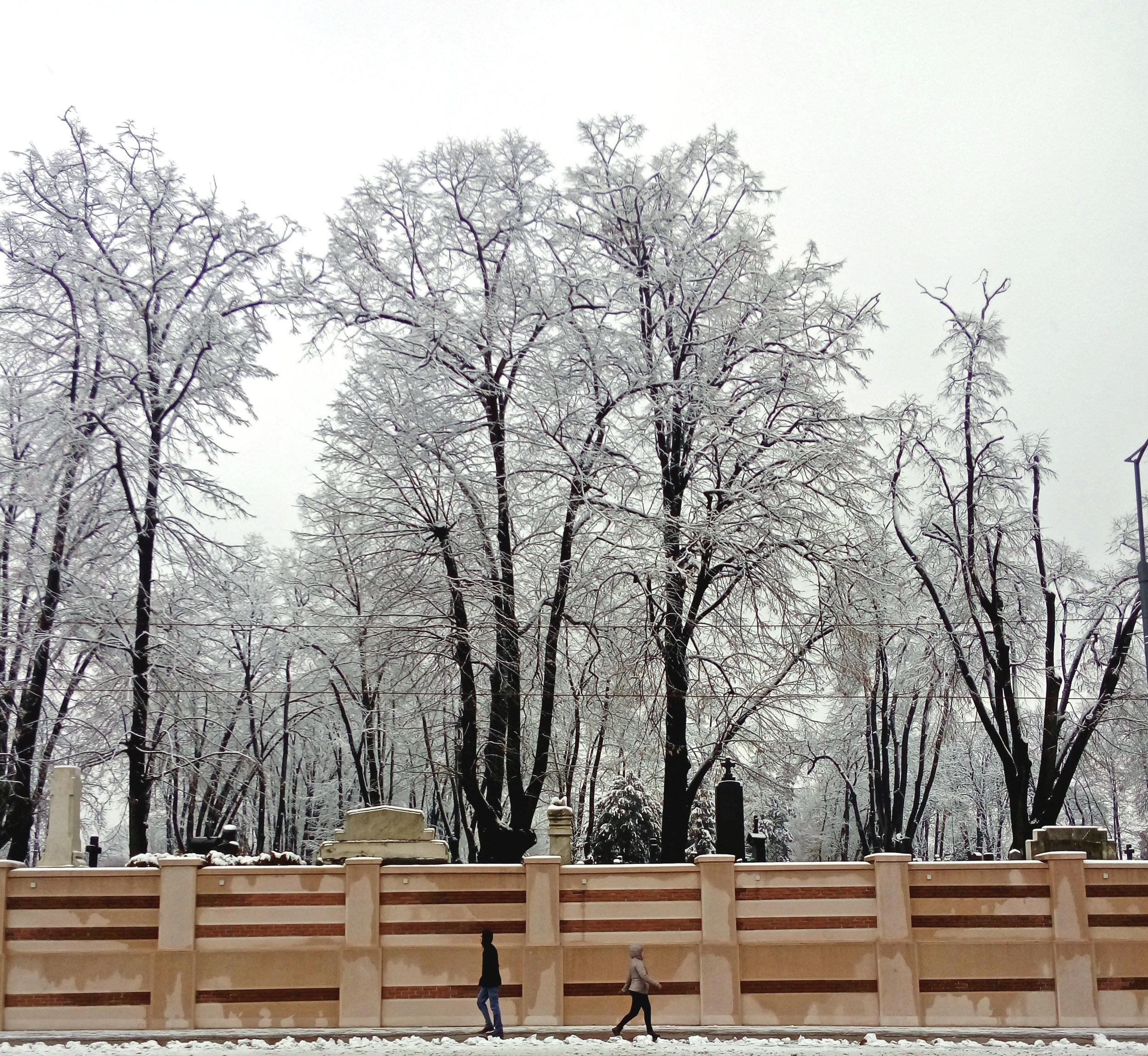 'Novo Groblje', New Cemetery, Belgrade