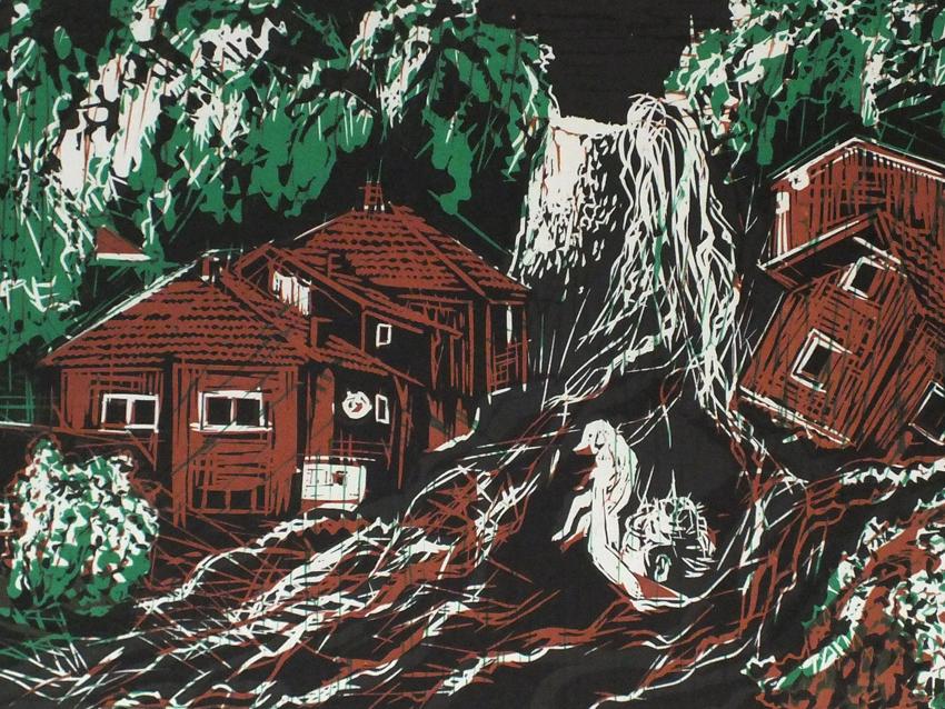 Balkan Floods closeup #14.jpg