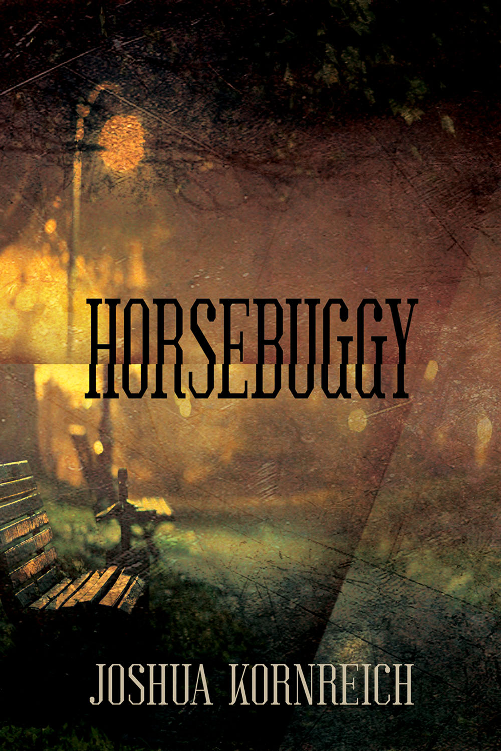HORSEBUGGY  (Sagging Meniscus Press, 2019)     Buy Now     After a nefarious yet revered mayor bans horse-drawn carriages in his city, a reclusive horse-and-buggy driver loses his job, his lover, and his unborn child, as the desolate farm he has lived on his whole life deteriorates around him along with his sanity. But this lone wolf vows revenge. With language lean and lyrical, and humor dark and grotesque,  Horsebuggy  is not only a haunting portrait of what happens when man's capacity for intimacy and acceptance is undermined by his more violent and sadistic impulses, but also a tragic love story and a penetrating study of how we destroy ourselves as much with our moralism and self-righteousness as with our vice and self-indulgence.