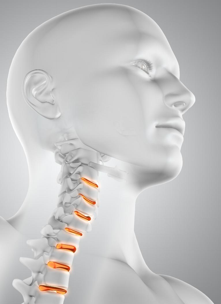 Dans l'apparition des maux de tête, le nerf trijumeau joue un rôle central. Son noyau d'origine descend le long de la moelle épinière en regard des deuxième et troisième vertèbres cervicales C2 et C3. Il innerve les trois quarts du visage, certains vaisseaux sanguins du cerveau ainsi que les méninges. -