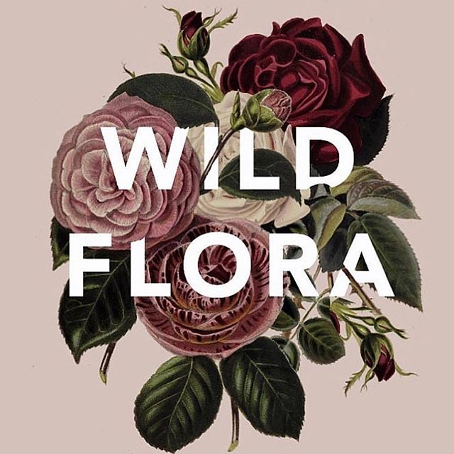 From deep in dreamtime to a real life event - Wild Flora birthed back in April @woodsbangalow this year with these beauties @thegardenofshe_ + @anamundistudio  A 7 course dessert degustation with 2 cocktails - all carefully curated and spiked with @superfeast tonic herbs and medicinal mushrooms and @natif.com.au Australian Natives. ⠀⠀⠀⠀⠀⠀⠀⠀⠀ I haven't shared all of the photos from this event yet, it's finally time I did as we have some exciting news and a new event is about to birth 💫 ⠀⠀⠀⠀⠀⠀⠀⠀⠀ Wild Flora lovin coming in hot!