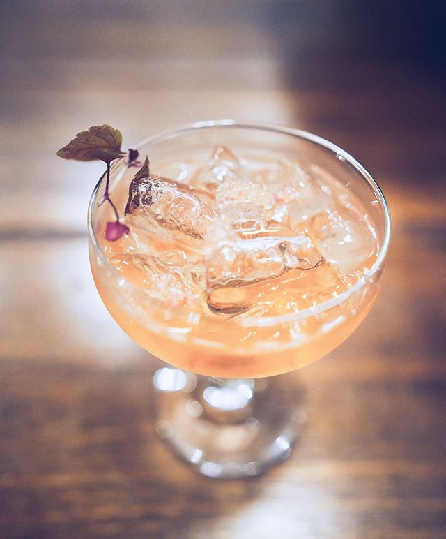 Drink Two. Brookies Slow Gin on ice. Finger Lime.