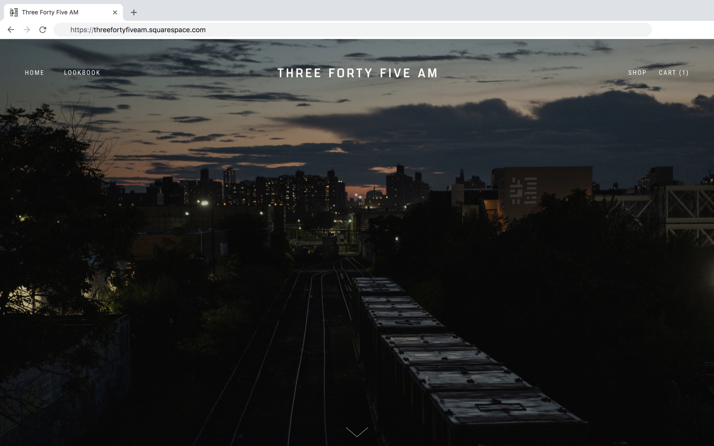 Screen Shot 2019-01-06 at 8.25.41 PM.png