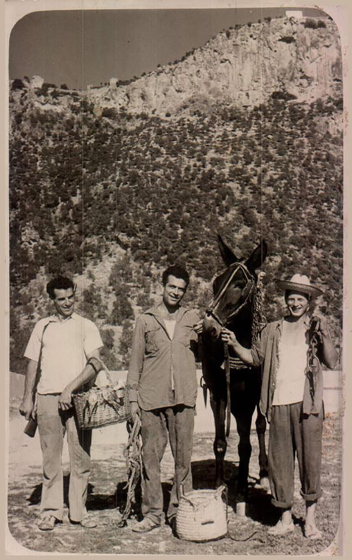 Mallorca, 1955 -