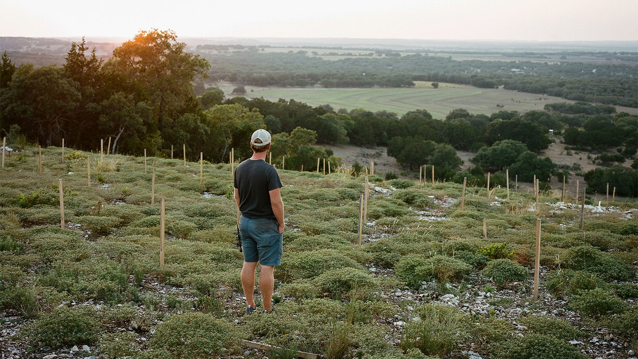 The Future Is Bright for Texas Wine