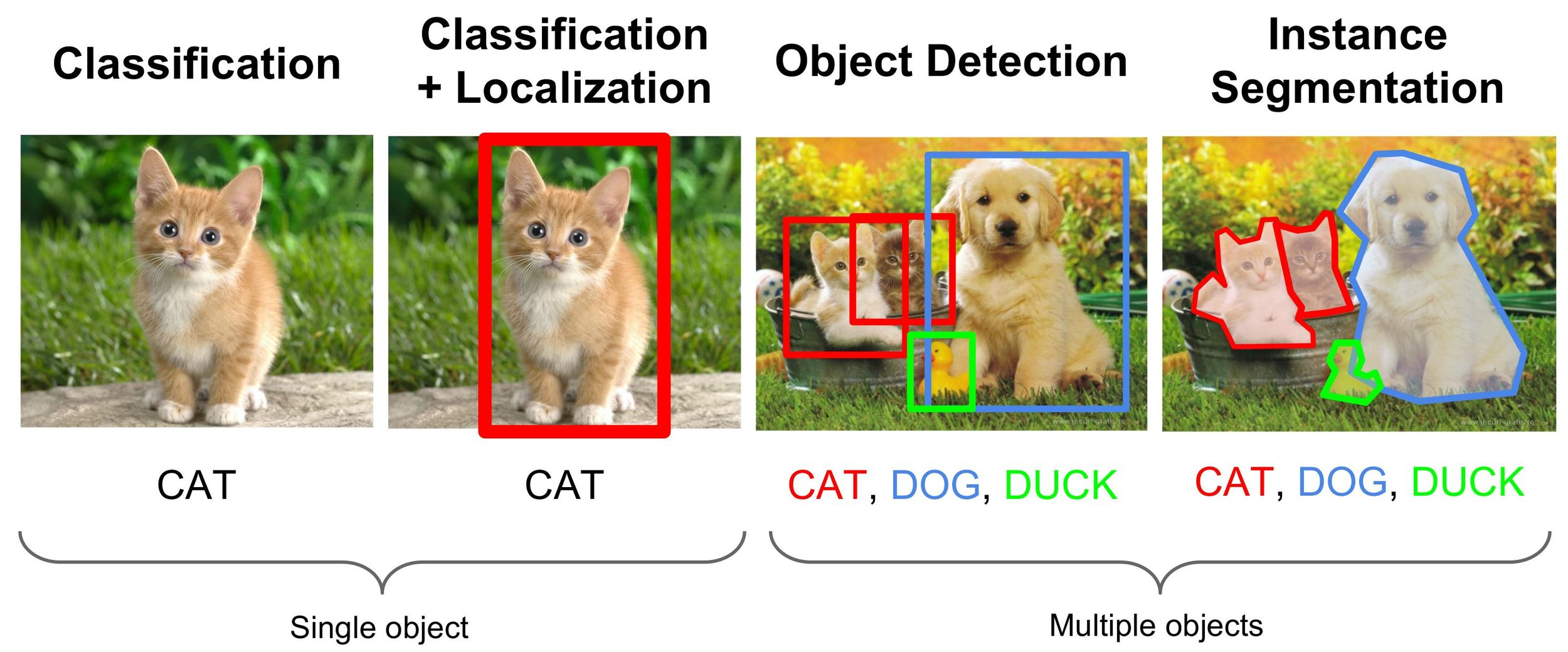 image-classification.jpg