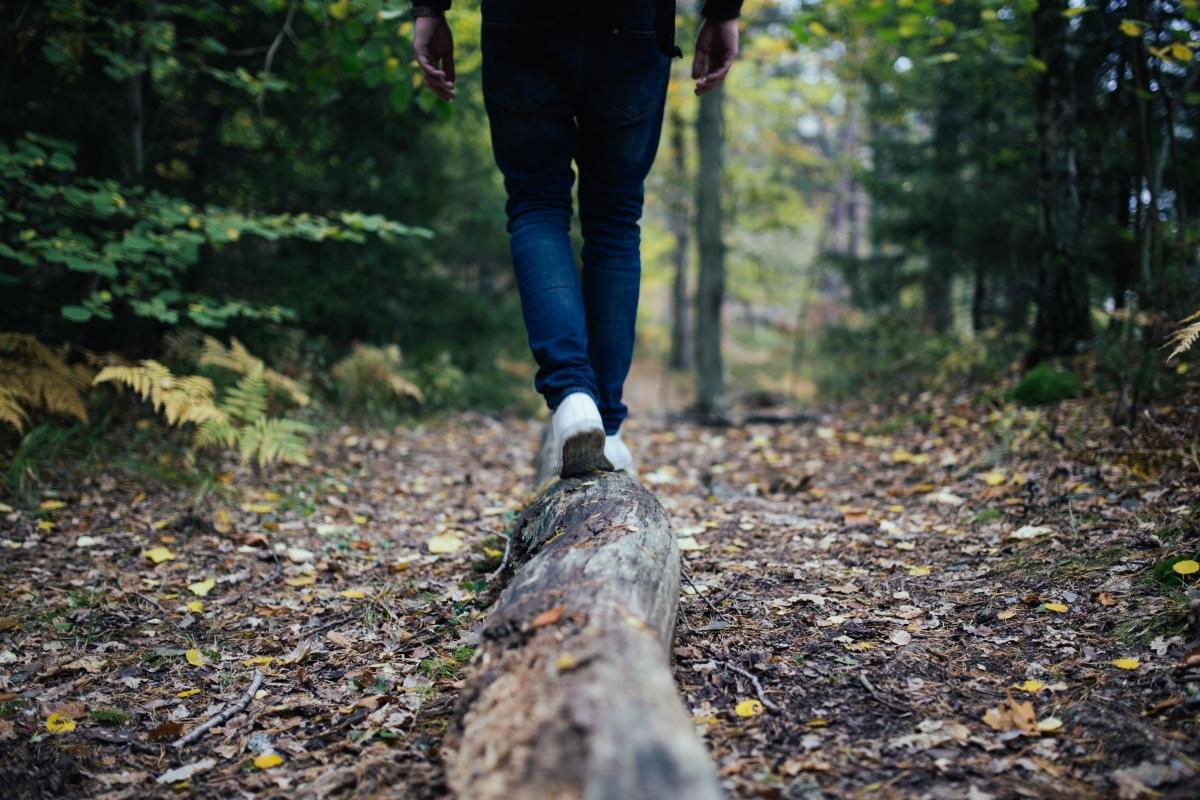 Optimized-walking on log.jpg
